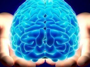Conheça o Módulo I de conhecimento, o 1o. de uma série de cursos sobre o Ser Humano, a Mente e práticas de Meditação